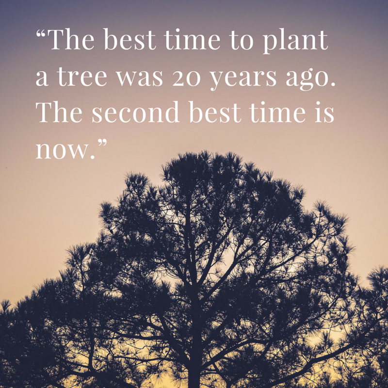 """The best time to plant a tree was 20 years ago. The second best time is now."""